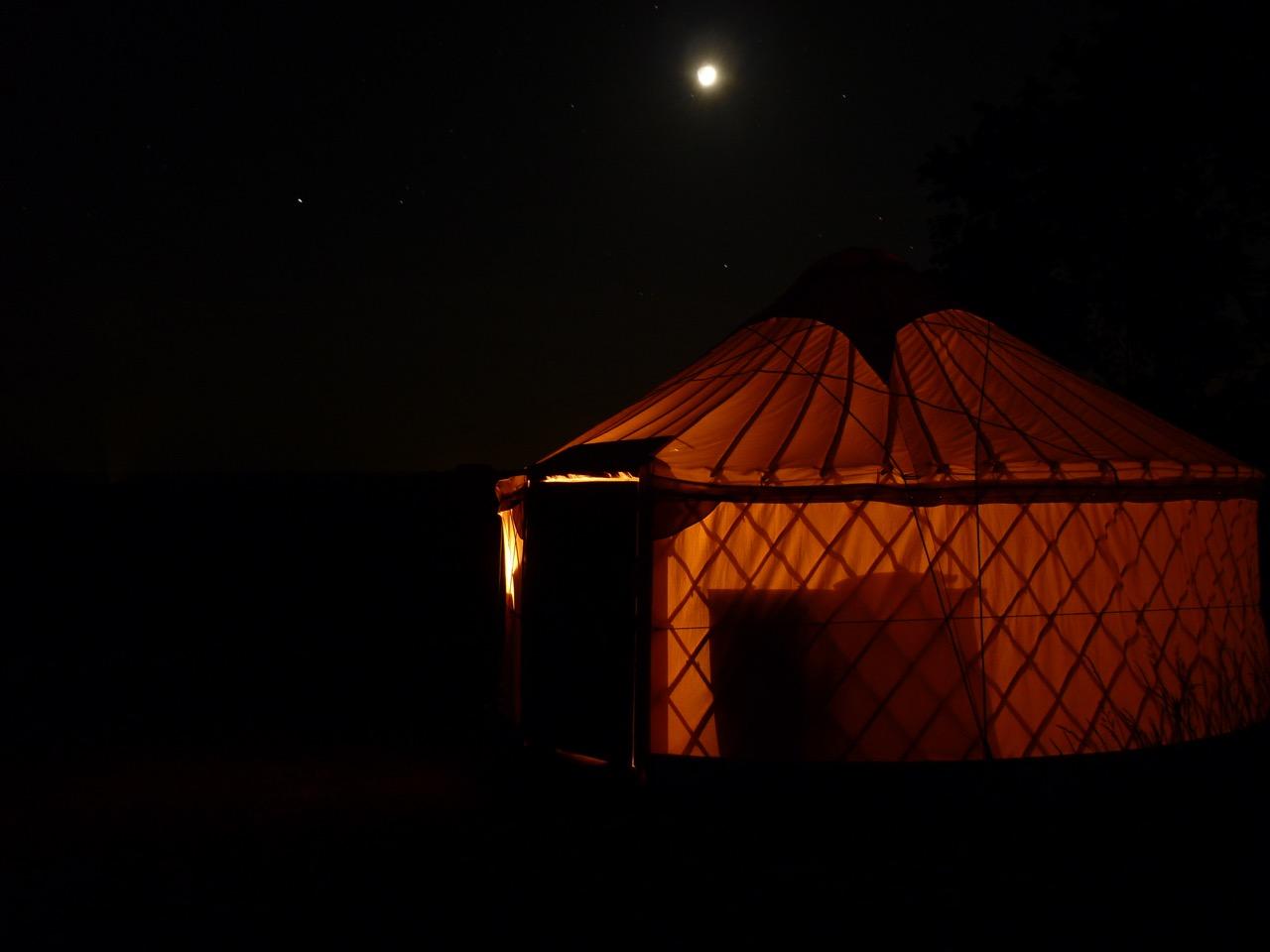 P1020366 Night glow